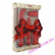 3006009929 - Вибронабор подарочный красный